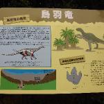鳥羽竜ってなんだ? 化石発見地に遭遇