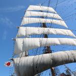 海フェスタ東三河 帆船「海王丸」セイルドリル