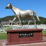 北海道馬産地見学ガイドツアー2017 静内の牧場を巡る